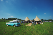 <h5>Vintage wedding with vintage car</h5>